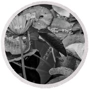4466- Lily Pads Black And White Round Beach Towel