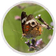 4467 - Butterfly Round Beach Towel