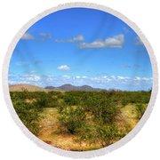 Sonora Desert Round Beach Towel