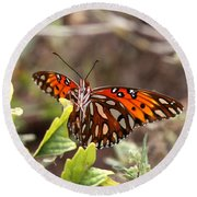 4529 - Butterfly Round Beach Towel