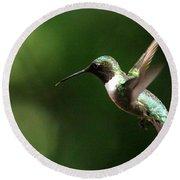 4753 - Ruby-throated Hummingbird Round Beach Towel