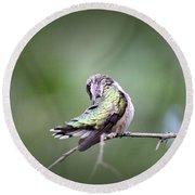 4864-002 - Ruby-throated Hummingbird Round Beach Towel