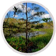 49- Florida Everglades Round Beach Towel