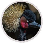 49- West African Crowned Crane Round Beach Towel