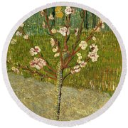Almond Tree In Blossom Round Beach Towel