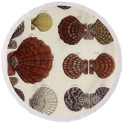 Aquatic Animals - Seafood - Shells - Mussels Round Beach Towel
