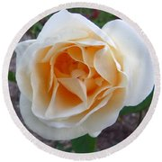 Australia - White Rose Flower Round Beach Towel