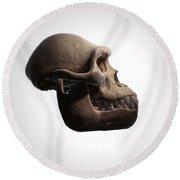 Australopithecus Skull Round Beach Towel