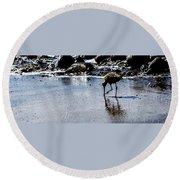 Ca Bird Round Beach Towel
