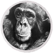 Chimpanzee Round Beach Towel