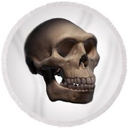 Homo Erectus Skull Round Beach Towel