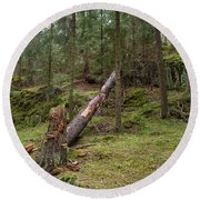 Old Forest In Kauppi Tampere Round Beach Towel