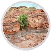 Sandstone Color In Valley Of Fire Round Beach Towel
