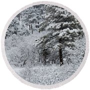Snowstorm In The Pike National Forest Round Beach Towel