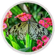 5050- Butterfly Round Beach Towel