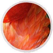 5060- Flamingo Round Beach Towel