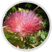 Australia - Red Caliandra Flower Round Beach Towel