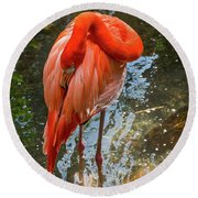 5182- Flamingo Round Beach Towel