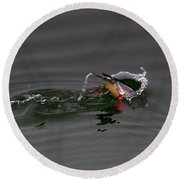 Red Breasted Merganser Fishing Round Beach Towel