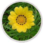 Australia - Daisy With Yellow Petals Round Beach Towel