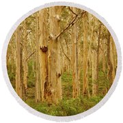 Boranup Forest II Round Beach Towel