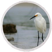 Egret Round Beach Towel