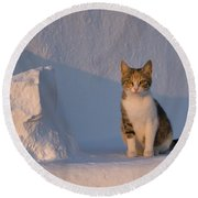Cat On A Greek Island Round Beach Towel