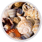 Mix Group Of Seashells Round Beach Towel