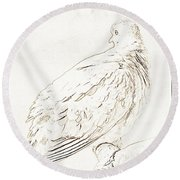 Mourning Dove, Animal Portrait Round Beach Towel