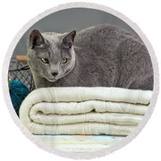 Russian Blue Round Beach Towel