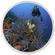 Scuba Diver Swims Underwater Amongst Round Beach Towel by Terry Moore