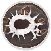 Septarian Nodule Round Beach Towel