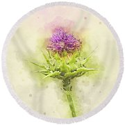 Silybum Eburneum Milk Thistle Round Beach Towel