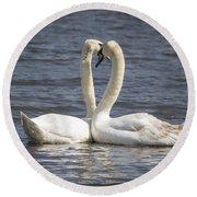 Swan -- Round Beach Towel