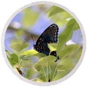 7759 - Butterfly Round Beach Towel