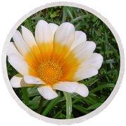 Australia - White Yellow Daisy Flower Round Beach Towel