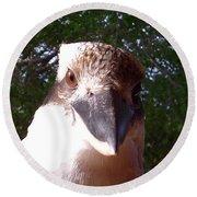 Australia - Kookaburra Stickybeak Round Beach Towel