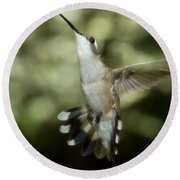 Female Ruby-throated Hummingbird Round Beach Towel