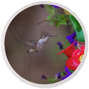 Hummingbird Found In Wild Nature On Sunny Day Round Beach Towel
