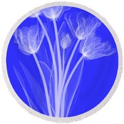Tulips, X-ray Round Beach Towel
