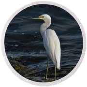 89- Snowy Egret Round Beach Towel