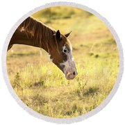 Horse In The Countryside  Round Beach Towel