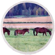 Horses Of The Fall Round Beach Towel