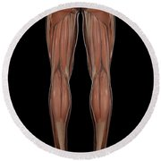 Leg Musculature Round Beach Towel