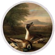Two Drakes In Landscape Round Beach Towel