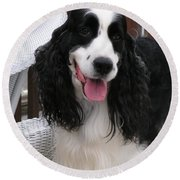 #940 D1038 Farmer Browns Springer Spaniel Adorable Happy Round Beach Towel