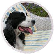 940 D1069 Farmer Browns Springer Spaniel Round Beach Towel