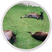 Australian Native Animals Round Beach Towel