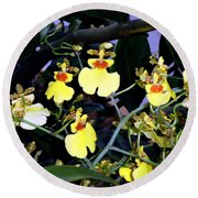 A Ballet Of Tiny Orchids Round Beach Towel