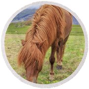 A Beautiful Red Mane On An Icelandic Horse Round Beach Towel